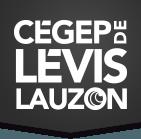 Fier partenaire de b2golf : Cegep de Lévis Lauzon