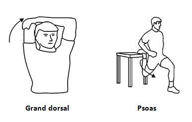 Votre dos a besoin d'une pause